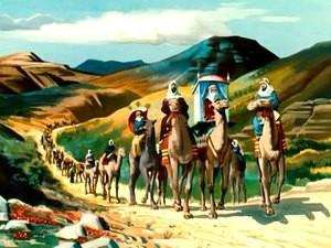 Sheba Travel